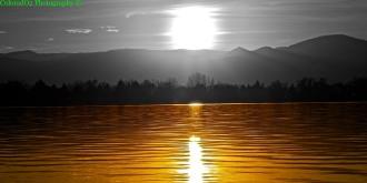50/50 Sunset
